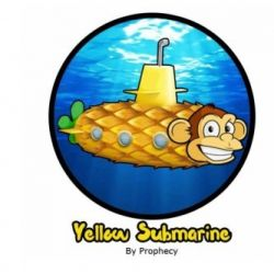 Concentré Yellow Submarine 10ml - Prophecy
