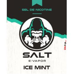 Ice Mint Salt E-Vapor - 10 ml