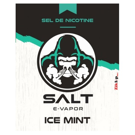 Ice Mint Salt E-Vapor - 10 ml