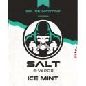 Ice Mint Salt 10 ml - Salt E-Vapor